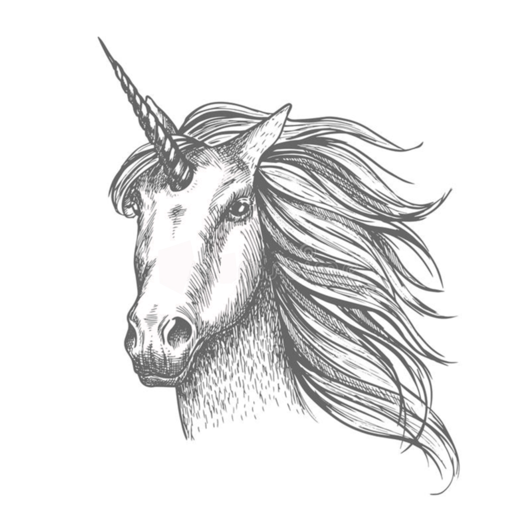 whats-so-special-about-the-unicorns-horn